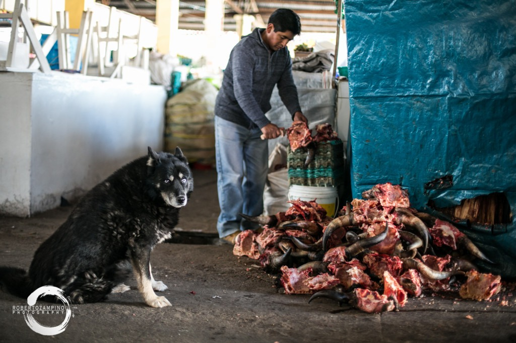 san pedro market - meet and dog - cuzco peru