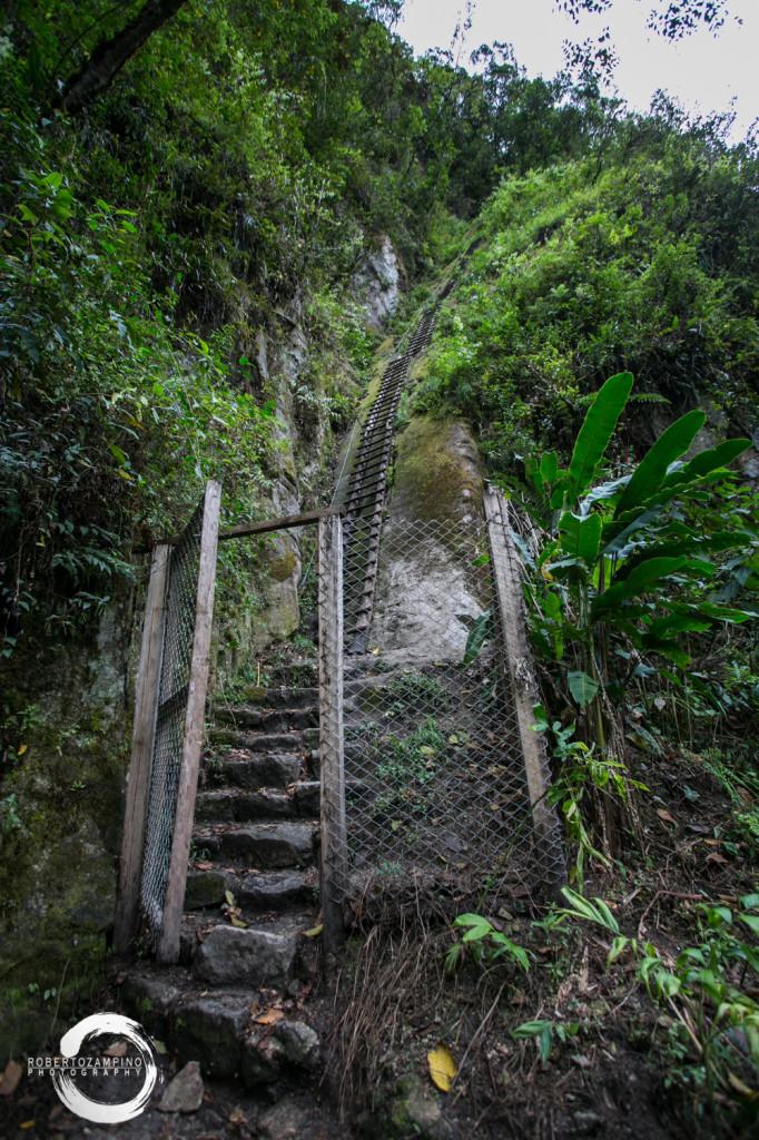 stairway to heaven - a 800m climb ladder style - agua caliente - peru q